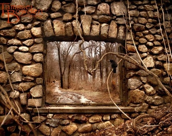 Stone Window with Crow - Original Photograph - Rustic Brown Woodland Abandoned Ruins Unique Autumn Home Decor Wall Art