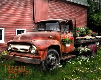 Flower Truck (Antique Ford Truck) - Original Photograph - Red Farm Farmhouse Barn Flowers Rustic Country Garden Home Decor Wall Art