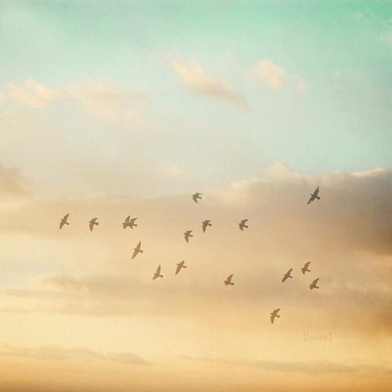 Sky Photograph -Nature photo - Bird sky Photograph - Dreamy and Vintage Inspired - Baby Nursery - Home Decor - Fine Art Photo
