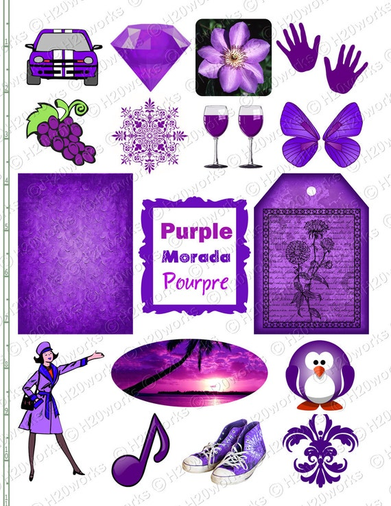 PURPLE Stuff Things That Are Purple Objects Butterfly
