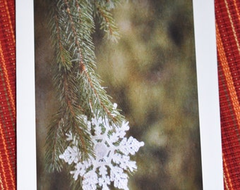 5 Christmas Holiday Cards vintage Antiqued Snowflake Ornament on Evergreen Pine Tree Photograph