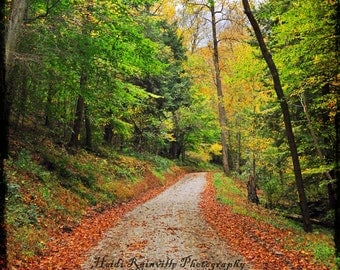 Vintage Surreal Roadway Path in Fall Autumn Bright Colors - 8x10 Photograph