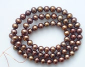 5-6mm  Golden Brown   freshwater potato pearls, roundish , FULL STRAND