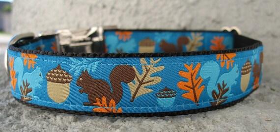 Squirrel dog collar -Blue