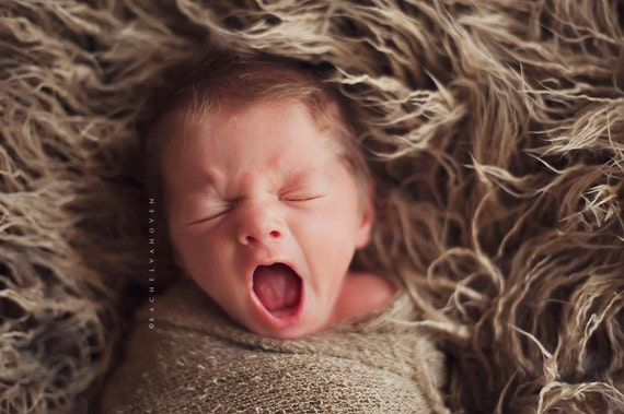SALE - Leighton Heritage - Soft, Cozy, Cuddly Faux Fur Nest - Perfect Newborn Photography Prop - Kinky Dreadlock Beige Textured, Layering