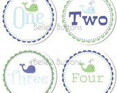 BeLLe'S BuTtONs - Henry - Baby Monthly Onesie Stickers