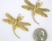 Two Twisted Raw Brass Dragonfly Pendants Wraps  B:P07