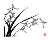 Orchid-Black and Gray