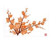 Plum Blossom-Orange 2 - Set of five notecards
