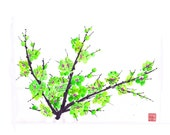 Plum Blossom - Green 2 - Notecard, set of 5
