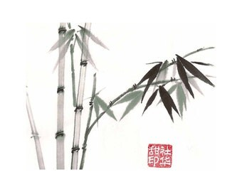Bamboo-Green - Set of 5 Notecards