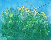 Summer Breeze - Limited Edition Print Package