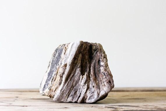 Natural Driftwood