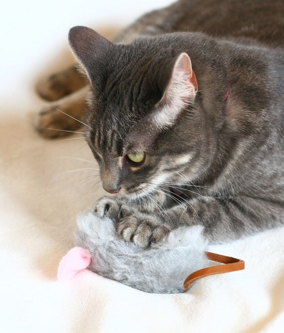 Catnip Mouse with Leather Tail