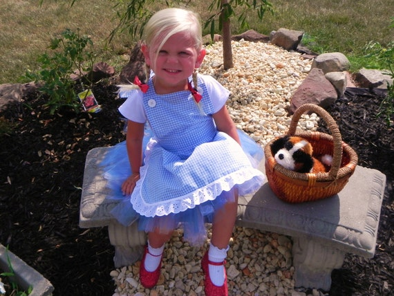 DOROTHY costume/Wizard of Oz Inspired Costume/Dorothy Tutu Costume