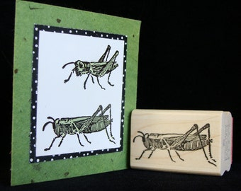 grasshopper no. 2
