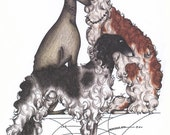 Borzoi and Greyhound Adoption Print - Limited Edition