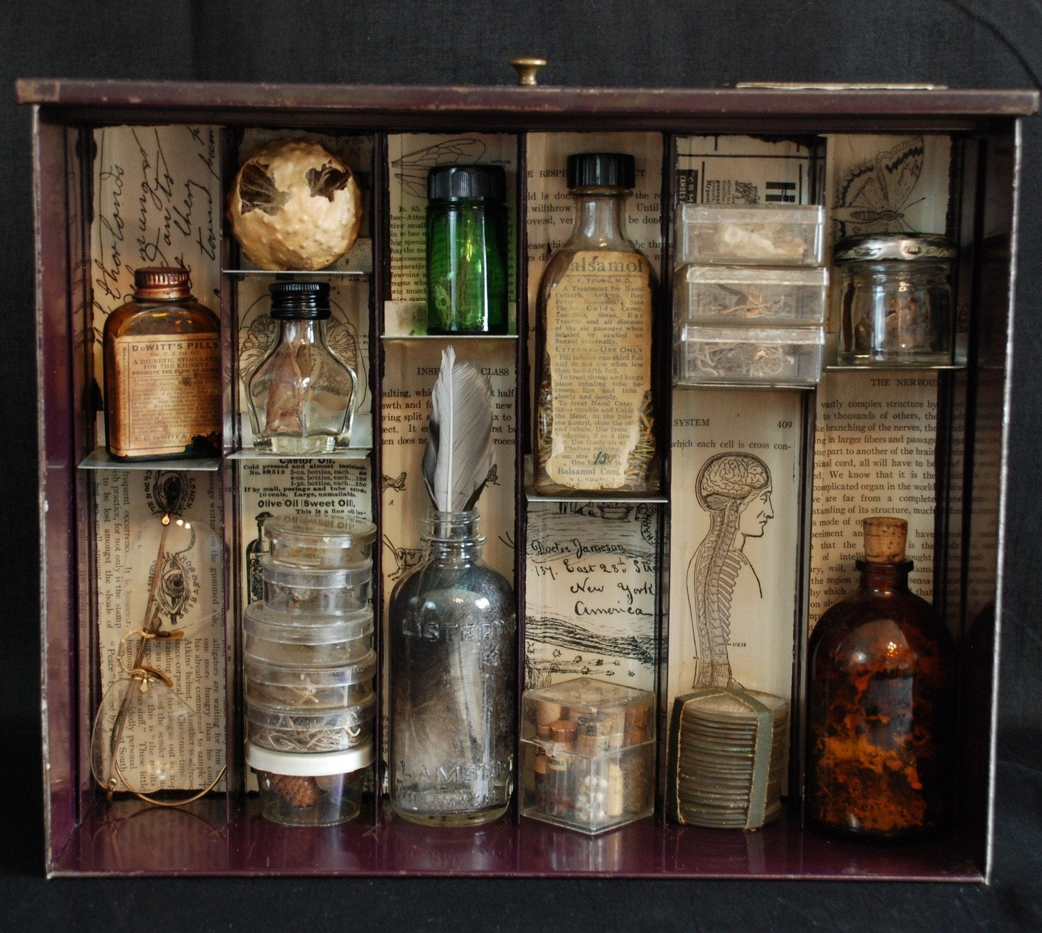 Apothecary Mixed Media Shadowbox Assemblage Complimentary