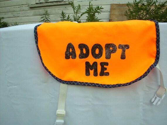 Dog Adopt Me Vest Medium/Large Flourescent Orange with Blue Patterned Trim