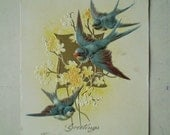 Blue Swallows and Spring Flowers - Greetings - 1913 - Antique American Postcard