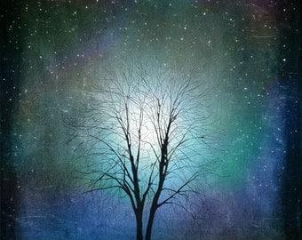 Starry Starry Night --  Tree Art Print  giclee print, art, tree art,print,gift,art collectibles,wall art,wall decor,wall decor