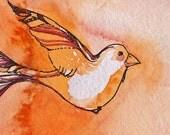 Tail Feathers - Original Watercolor Painting - Orange Bird