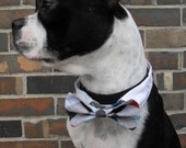 Argyle Bow Tie and Shirt Collar