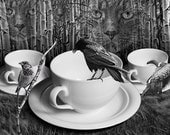 Dreams of Cutio A Surreal Fantasy of the Face of a Cat in the Birch Trees watching Birds by White Coffee Cups a Photographic Composite