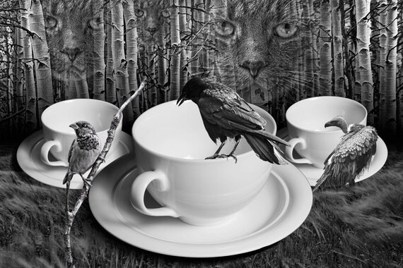 Dreams of Cutio A Surreal Fantasy of a Cat among the Birch Trees watching a Crow,Sparrow, and Vulture Birds perched by White Coffee Cups