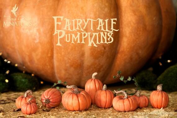 Fairytale Pumpkin Set (B)  - FAIRYTALE RANGE