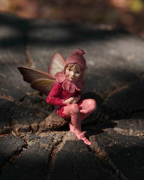 Items Similar To Boy Fairy Photograph Wood Grain Fine Art