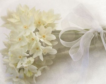 Paperwhites - White Flower Photography - White Spring Ethereal Dreamy - Floral Photograph - Wall Decor  - Vanilla Feminine Green Gardening