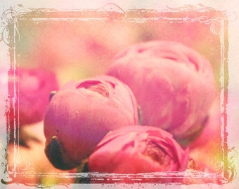 A Bit Of Happy  - Signed Fine Art Photograph - Pink Peony Flower - Floral Home Decor - Romantic Weddings - Shabby Chic