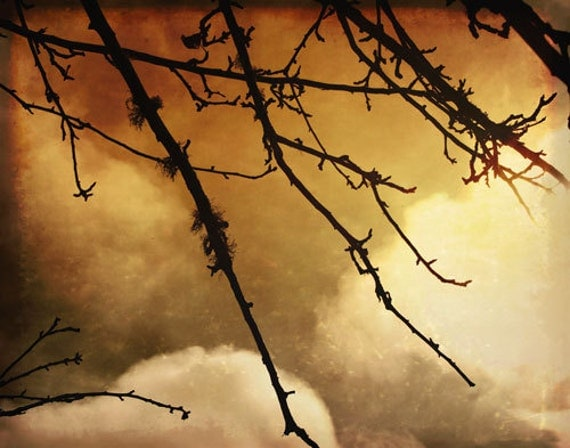 Haunting Sky - Spooky Mysterious Photograph - Halloween Photo - Autumn Fall Photography - Brown Sepia Clouds - Tree Topaz Night