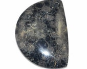 Unique Black Fossil Jasper Pendant Bead J22B167953