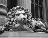 Dollar Bank Lion- Pittsburgh, PA- 8x12 Print