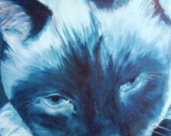 "Cat Siamese animal pet original oil painting monocrome on 12"" x 12"" canvas by Sandra Cutrer Fine Art"