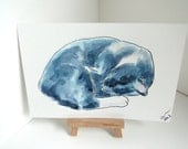 OSWOA Cat Snooze Original Watercolour & Ink Painting 4x6 OOAK
