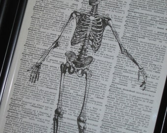BOGO SALE Upcycled Dictionary Art Book Print of Happy Skeleton Print on Vintage Dictionary Book Page 8 X 10