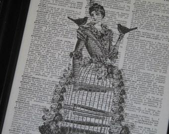 Steampunk Dictionary Art Dictionary Print  Birdcage Book Art  Bird Dictionary