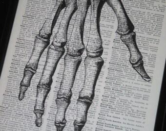 BOGO SALE Bones Anatomy Hand Image Dictionary Print Upcycle 8 x 10