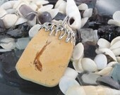 Fish Fossil in Sandstone Pendant with Sterling Silver - Free Domestic Shipping to US