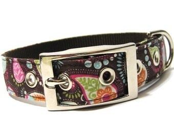 Pretty in Paisley Dog Collar