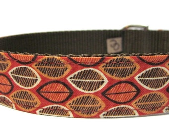 Orange and Brown Pumpkin Seeds Dog Collar