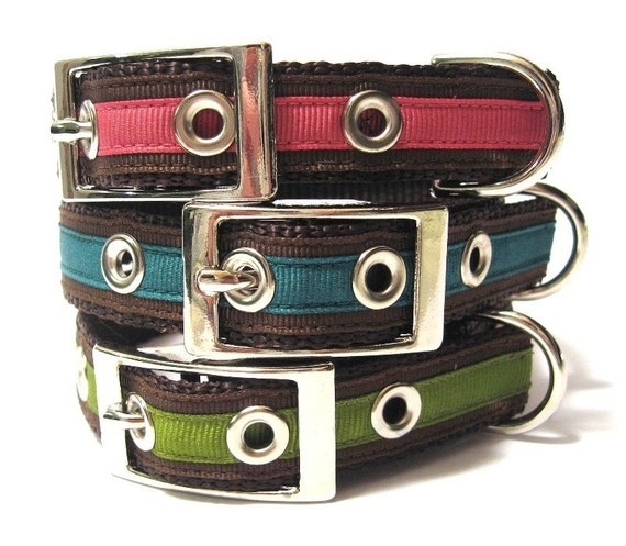Custom Dog Collar w/ Metal Buckle- Chloe's Classic Bright Solids
