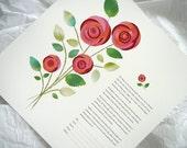 Bouquet of Roses - Ketuba...