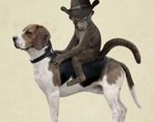 Monkey in Cowboy Hat Riding a Beagle 8x10 Art Print