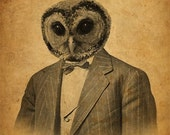 Owl in a Suit Portrait - Owl Art - Owl Art Print - Wood Block Print