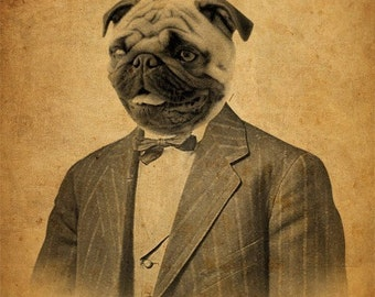 Pug Art - Pug in a Suit - Dog in a Suit -  8x10 Art Print