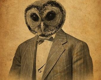 Owl in a Suit Portrait - Owl Art - Owl Art Print - Wood Block Print